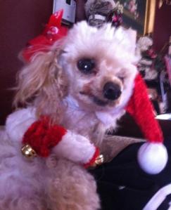 Princess celebrating Christmas with us
